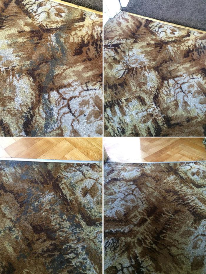 smc_luton_hall-carpet_stain_removal