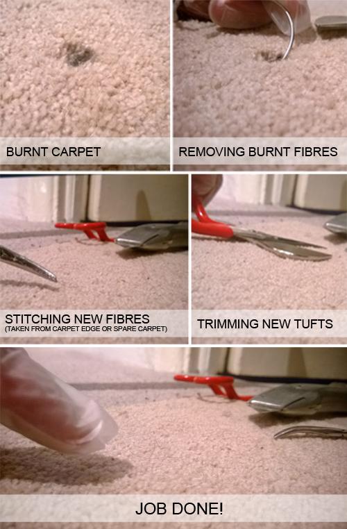 Carpet Seam Repair Brighton Co Universalcouncilinfo