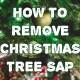 removing-tree-sap
